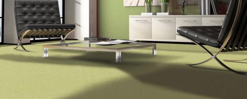 Sit In Teppichböden
